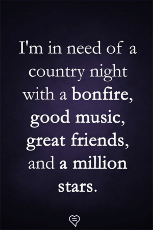 Friends, Memes, and Music: I'm in need of a  country night  with a bonfire,  good music,  great friends,  and a million  stars.