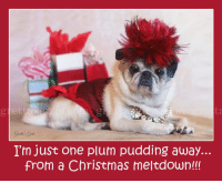 Memes, 🤖, and Plum: I'm just one plum pudding away.  from a Christmas meltdown!!! :P Breath...just breath...:) Love you all to pieces <3 <3 <3 MWAH!!!! Maddie Kathryn  www.grettasgirls.com
