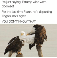 Damn Eagles and their tomfoolery smh (@grandmas.diary): I'm just saying, if trump wins were  doomed!  For the last time Frank, he's deporting  illegals, not Eagles  YOU DON'T KNOW THAT Damn Eagles and their tomfoolery smh (@grandmas.diary)