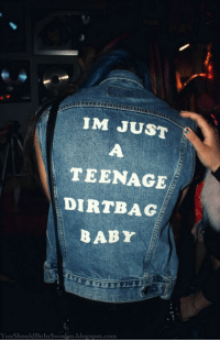 Instagram, Target, and Blogspot: IM JUST  TEENAGE  DIRTBAG  BABY  YouShouldBeInSweden.blogspot.com text/quotes postson instagram?heree*following back
