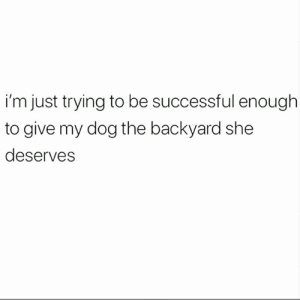 Memes, 🤖, and Dog: i'm just trying to be successful enough  to give my dog the backyard she  deserves 😌