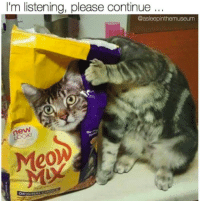 LOL: I'm listening, please continue  @asleepinthemuseum  MeoW  ORIGIN LOL