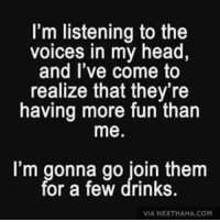 voices in my head: I'm listening to the  voices in my head,  and I've come to  realize that they're  having more fun than  me  I'm gonna go join them  or a few drinks.  VIA NEXTHAHA, COM