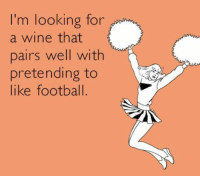 Football, Memes, and Wine: I'm looking for  a wine that  pairs well with  pretending to  like football