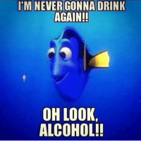IM NEVER GONNA DRINK  AGAIN!!  OH LOOK,  ALCOHOL!!