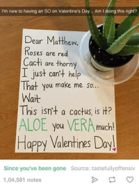 Valentines Day Meme: I'm new to having an so on Valentine's Day... Am l doing this right?  Dear Matthew,  Roses are red  Cacti are thorny  I just can't help  That you make me so...  Wait  This isn't a cactus, is it?  ALOE you VERA much!  Happy Valentines Day!  Since you've been gone Source: tastefully offensiv  1,04,581 notes