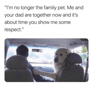 "Urrrrmmm hollll up by DrGeezerLadyPleaser MORE MEMES: ""I'm no longer the family pet. Me and  your dad are together now and it's  about time you show me some  respect."" Urrrrmmm hollll up by DrGeezerLadyPleaser MORE MEMES"