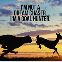 Double tap if you hunt your goals down 🎯 Courtesy @FearlessMotivationOfficial: I'M NOT A  DREAM CHASER  I'M A GOAL HUNTER  FEARLESS MOTIVATION Double tap if you hunt your goals down 🎯 Courtesy @FearlessMotivationOfficial