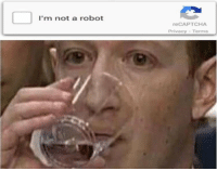 Robot, Recaptcha, and Im Not a Robot: I'm not a robot  reCAPTCHA  Privacy -Terms