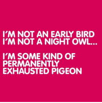 Truth.: I'M NOT AN EARLY BIRD  I'M NOT A NIGHT OWL.  I'M SOME KIND OF  PERMANENTLY  EXHAUSTED PIGEON Truth.