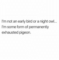 Funny, Smh, and True: I'm not an early bird or a night ow..  I'm some form of permanently  exhausted pigeon. True smh 😑