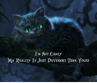 im not crazy: IM NOT CRazy  My REaLITy Is JusT DIFFERENT THaN YouRS
