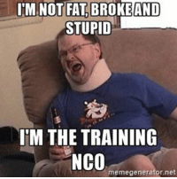 Memes, Military, and Fat: IM NOT FAT BROKE AND  STUPID  IM THE TRAINING  NCO  memegenerator.net nco training officer fat stupid frostedflakes noncom enlisted military active reserves guard service rank tonythetiger theyaregreat theyregreat