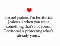 """Jealous, Memes, and 🤖: I'm not jealous I'm territorial  Jealous is when you want  something that's not yours  Territorial is protecting what's  already yours. Type """"Yes"""" if you Agree!"""