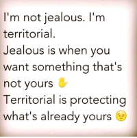 💯 ♡: I'm not jealous. I'm  territorial  Jealous is when you  want something that's  not yours  Territorial is protecting  what's already yours 💯 ♡