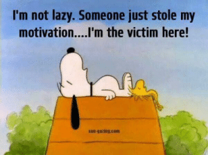 Lazy, Memes, and 🤖: I'm not lazy. Someone just stole my  motivation....I'm the victim here!  sun-gazing.com