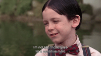 Memes, Movie, and 🤖: I'm not like those guys  I'm a sensitive male.  sitive male movie: the little rascals