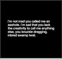 Memes, Mad, and Sad: i'm not mad you called me an  asshole. i'm sad that you lack  the creativity to call me anything  else, you knuckle dragging,  inbred swamp twat DV TinMan