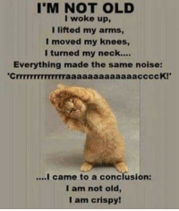 Old, Terrible Facebook, and Haha: I'M NOT OLD  I woke up,  I lifted my arms,  l moved my knees,  I turned my neck....  Everything made the same noise:  cK!  came to a conclusion:  I am not old,  I am crispy!