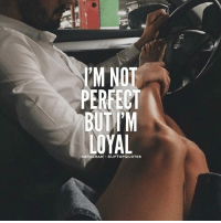 Instagram, Memes, and 🤖: IM NOT  PERFECT  BUTIM  LOYAL  INSTAGRAM OUPTOPQUOTES Fair enough.