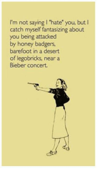 "Dank, Honey Badger, and 🤖: I'm not saying l ""hate"" you, but  I  catch myself fantasizing about  you being attacked  by honey badgers,  barefoot in a desert  of legobricks, near a  Bieber concert."
