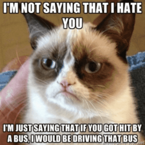 """I'm not saying that I hate you, I'm just saying that if you got hit by a bus, I would be driving that bus.""  #grumpycatmemes #ripgrumpycat #memes: I'M NOT SAYING THAT I HATE  YOU  I'M JUST SAYING THAT IF YOUGOT HIT BY  A BUS,IWOULD BE DRIVING THAT BUS  memogeheEOT.net ""I'm not saying that I hate you, I'm just saying that if you got hit by a bus, I would be driving that bus.""  #grumpycatmemes #ripgrumpycat #memes"