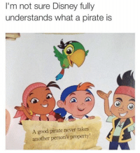 Disney, Memes, and Good: I'm not sure Disney fully  understands what a pirate is  A good pirate never takes  another person's property! A good pirate ALWAYS SEEDS