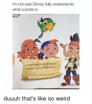 Dank, Disney, and Memes: I'm not sure Disney fully understands  what a pirate is  A good pirate never takes  another person's property  duuuh that's like so weird Disney really has screwed up. Badly. by scp-002 MORE MEMES