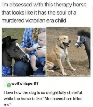"meirl: I'm obsessed with this therapy horse  that looks like it has the soul of a  murdered victorian era child  Gende Carousal Minia  wolfwhisper97  I love how the dog is so delightfully cheerful  while the horse is like ""Mrs haversham killed  me"" meirl"
