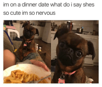 Memes, 🤖, and  Dinner Date: im on a dinner date what do i say shes  so cute im so nervous so nervous tbh [twitter: allycstone]