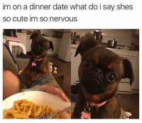 Cute, Date, and Dates: im on a dinner date what do i say shes  so cute im so nervous