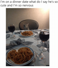 Cute, Memes, and Date: I'm on a dinner date what do l say he's so  cute and l'm so nervous