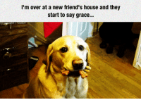 Friends, House, and Time: I'm over at a new friend's house and they  start to say grace... <p>My Reaction Every Time.</p>