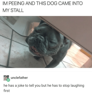 He's got jokes! via /r/memes https://ift.tt/2Acqv0J: IM PEEING AND THIS DOG CAME INTO  MY STALL  unclefather  he has a joke to tell you but he has to stop laughing  first He's got jokes! via /r/memes https://ift.tt/2Acqv0J