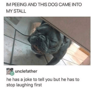 Dog, Him, and First: IM PEEING AND THIS DOG CAME INTO  MY STALL  unclefather  he has a joke to tell you but he has to  stop laughing first Give him a minute to breathe