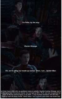 "Ass, Bad, and Doctor: I'm Peter, by the way  Doctor Strange.  Oh, we're using our made-up names. Then, I am...Spider-Man.  ok listen here u little shit, my goddamn name is actually Stephen fucking Strange, and u  better bet ur ass I'm real-ass doctor too cuz I got an M.D., Ph.D. and was recognized for  years as the top neurosurgeon in my field u say anymore dumbass shit like that, I  might as well call these hands ""Gwen Stacy"" cuz ur gonna catch them real fuckin bad <p>Peter thinks he's so smug</p>"