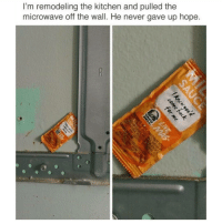 Instagram, Meme, and Memes: I'm remodeling the kitchen and pulled the  microwave off the wall. He never gave up hope. @pubity was voted 'best meme account on Instagram' 😂