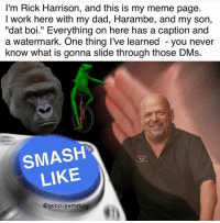 """Snapchat: dankmemesgang  IG: guccigameboy: I'm Rick Harrison, and this is my meme page.  I work here with my dad, Harambe, and my son,  'dat boi."""" Everything on here has a caption and  a watermark. One thing I've learned you never  know what is gonna slide through those DMs.  SMASH  LIKE  @gucci gameboy Snapchat: dankmemesgang  IG: guccigameboy"""