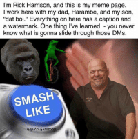 "Ricks out for Harambe: I'm Rick Harrison, and this is my meme page.  I work here with my dad, Harambe, and my son,  ""dat boi."" Everything on here has a caption and  a watermark. One thing I've learned you never  know what is gonna slide through those DMs.  SMASH  LIKE  @gucci gameboy Ricks out for Harambe"