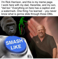 """Smash dat mf like button ( @gucci.gameboy the dankest of the dank ): I'm Rick Harrison, and this is my meme page  I work here with my dad, Harambe, and my son,  """"dat boi."""" Everything on here has a caption and  a watermark. One thing I've learned you never  know what is gonna slide through those DMs.  SMASH  LIKE  @gucci gameboy Smash dat mf like button ( @gucci.gameboy the dankest of the dank )"""
