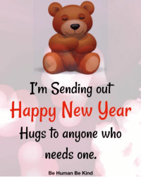 Memes, New Year's, and Happy: I'm Sending out  Happy New Year  Hugs to anyone wha  needs one  Be Human Be Kind <3