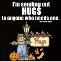 Memes, Horse, and 🤖: I'm sending out  HUGS  to anyone who needs one.  The Horse Mafia  Tuos