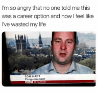 """Life, Memes, and Best: I'm so angry that no one told me this  was a career option and now l feel like  I've wasted my life  TOM HART  Penguinologist  BBC BREAKFAST <p>Best career option via /r/memes <a href=""""http://ift.tt/2prtl9j"""">http://ift.tt/2prtl9j</a></p>"""