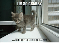 You have been warned!: IM SO CRABBY  IM NOTIAVENTALKINGTOMYSELF You have been warned!