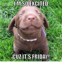 Being excited it's Friday never gets old!: IM SO EXCITED  CUZ IT'S FRIDAY! Being excited it's Friday never gets old!