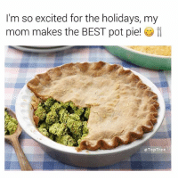 Best, Mom, and Trendy: I'm so excited for the holidays, my  mom makes the BEST pot pie!  eTopTree Follow @toptree for the dankest posts