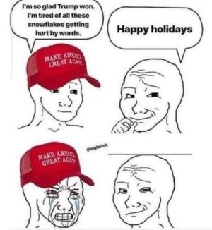 Politics, Happy, and Spring: I'm so glad Trump won.  I'm tired of all these  snowflakes getting  hurt by words.Happy holidays  MAKE AMEİ  GREAT AGA  c.  ebigfatfuk  MAKE AME  GREAT AGAN It might be Spring, but I still see snowflakes