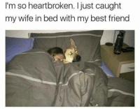 heartbroken: I'm so heartbroken. Ijust caught  my wife in bed with my best friend