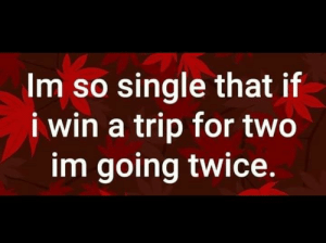 Sounds good to me.: Im so single that if  i win a trip for two  im going twice. Sounds good to me.