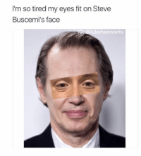 steve buscemi eyes: I'm so tired my eyes fit on Steve  Buscemi's face  G: @lukehannontv
